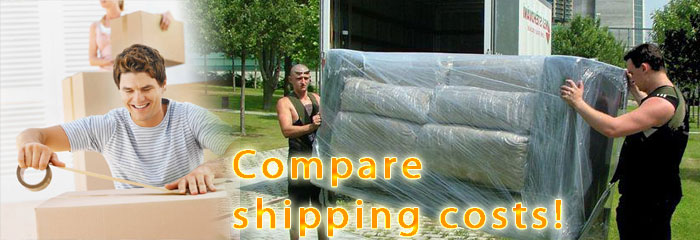 Cheap international removals